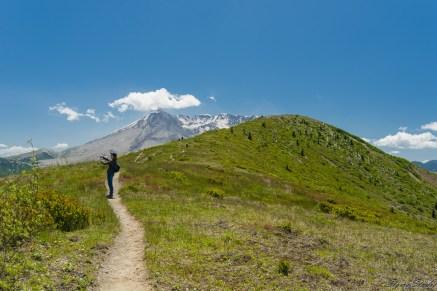 Harry's Ridge 的脊梁