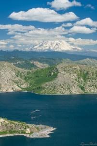 登上 Harry's Ridge 的第一印象莫过于深蓝色的湖水与远处高耸入云的 Mt. Adams 了