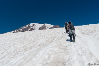 这一段非常陡峭,抬头甚至觉得 Rainier 被挡住了