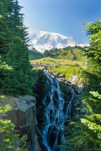 Edith Creek 在这里形成了 Myrtle Falls,距离 Paradise 只有半 mile