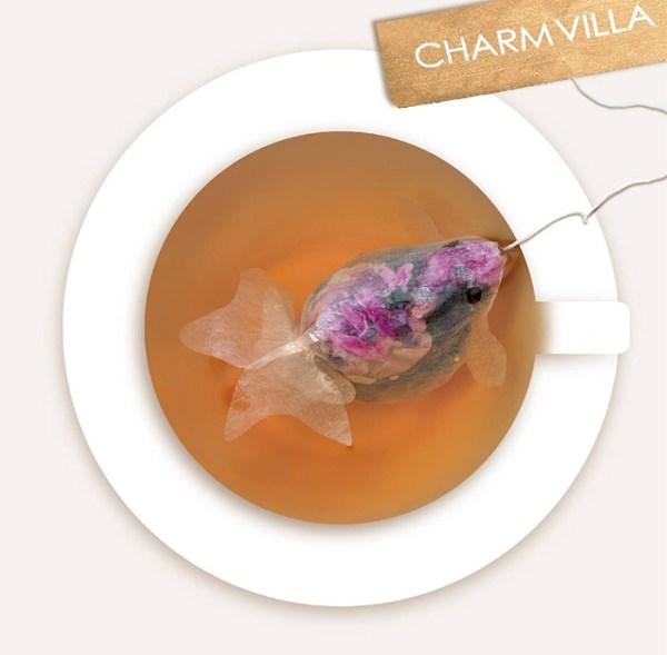 charm-villa-2