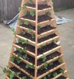 build this raised garden bed  [ 650 x 1297 Pixel ]