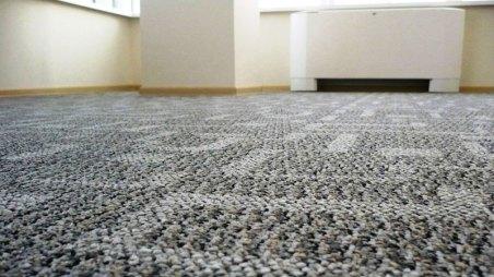 carpet in the hallway