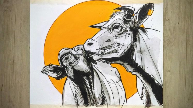 cows_love_01