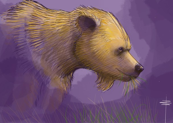 procreate-bear-purple