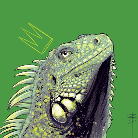 procreate-iguane