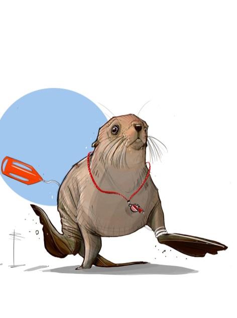 procreate-seal