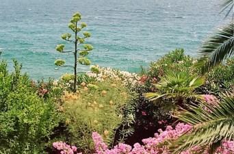 Garten dalmatien