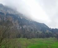 Unten angekommen (Pfannenstiel) - die Alp noch immer im Grau