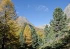 Traumhaft, der Gipfel heisst Corn da Mürasciola (oberhalb Alpe Campo)