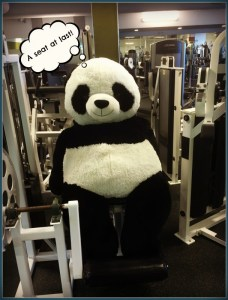 Panda gym workout