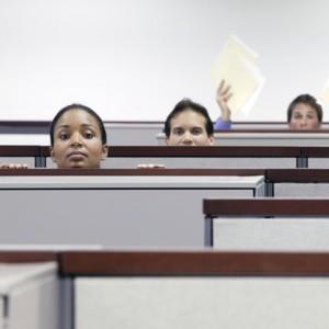 CEO Peer Groups, Leadership Development, Mentoring, Employee