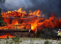 """Hawaii Wildfires Life And Times Of """"renaissance Ronin"""""""
