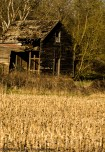 Rural Warm Decay II