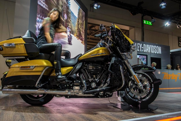 """My favorite girl at the show. Nikon D750 24 mm (24-120.0 mm ƒ/4) 1/4"""" ƒ/8 ISO 100"""