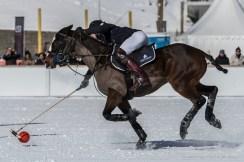 Sankt Moritz Snow Polo 2015 - Nikon D810, 260mm (85-400mm ƒ4.5-5.6) 1/1250 ƒ/9 ISO 200
