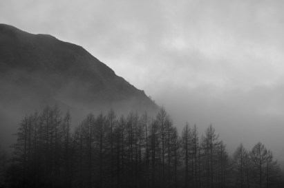 mists-002