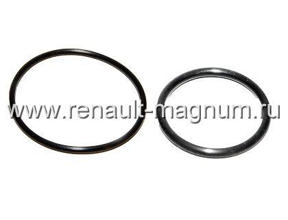 Уплотнительные кольца индивидуальных ТНВД EUP 5001863523