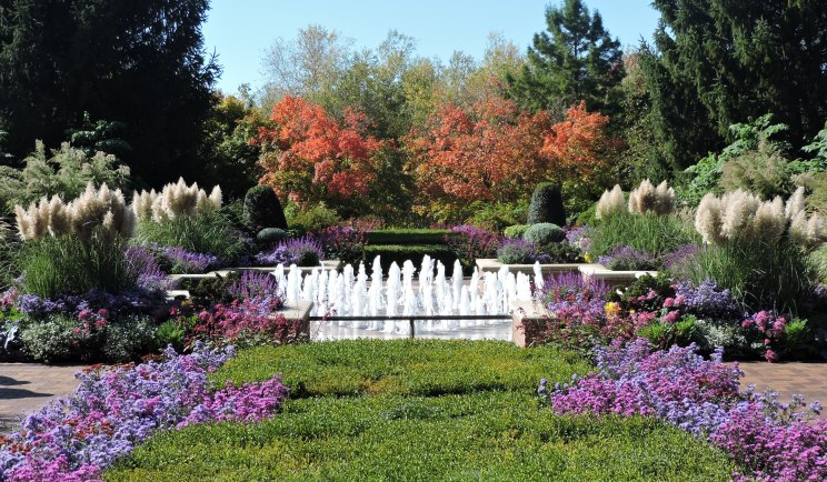 Walk The Chicagao Botanic Gardens and see the beauty of fall flowers!