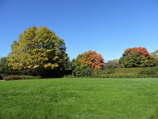 The Chicago Botanic Gardens, a beautiful place to watch the leaves change.