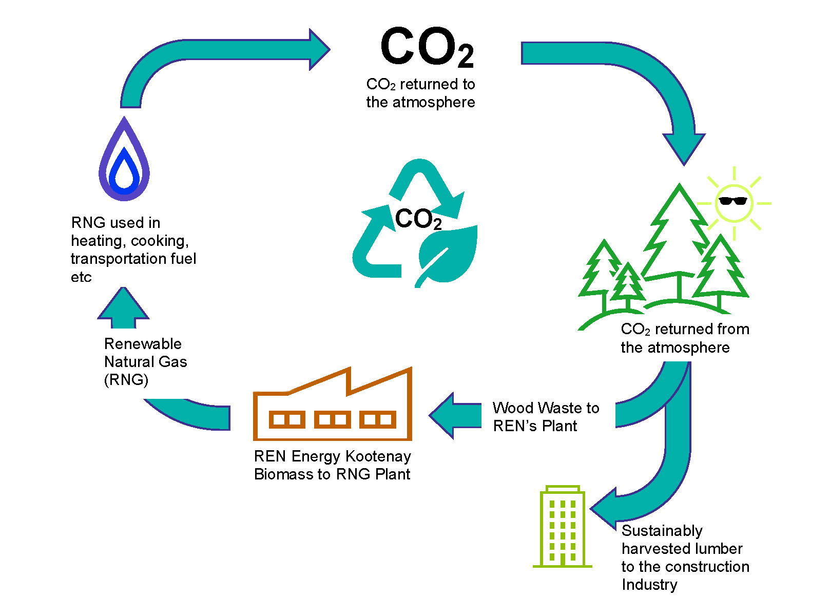 diagram of closed carbon cycle of rng plant from biomass