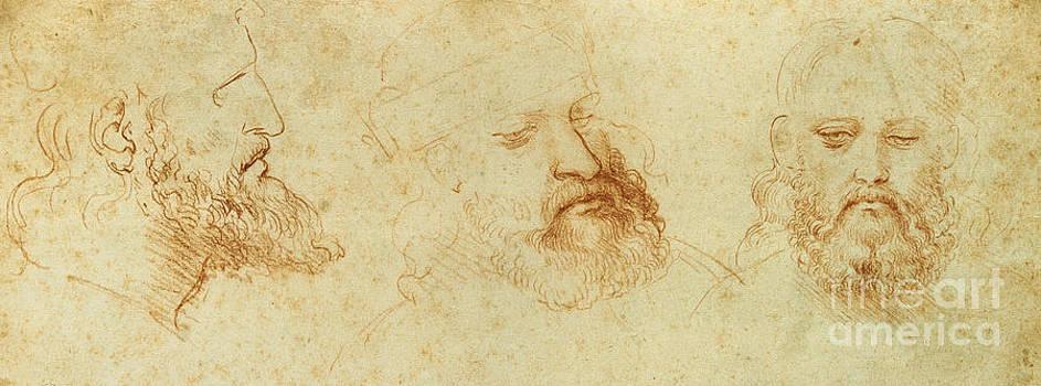 Leonardo Da Vinci - Estudio de una cabeza masculina