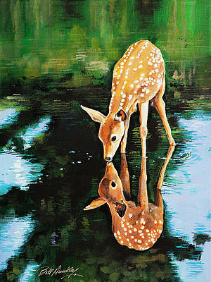 Deer Drinking Water Drawing : drinking, water, drawing, Drinking, Water, (Page, America