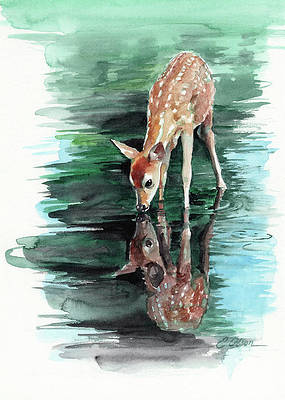 Deer Drinking Water Drawing : drinking, water, drawing, Drinking, Water, Paintings, America