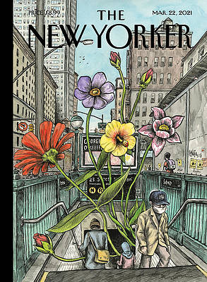 new yorker covers wall art