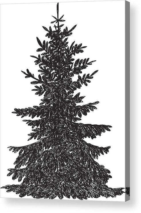 pine tree drawing acrylic