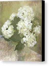 Dreamy Vintage Cottage Chic White Hydrangeas - Shabby Chic ...