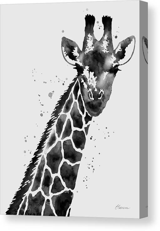 giraffe in black and
