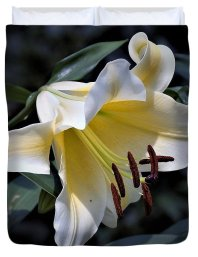 Asiatic Lily Duvet Cover featuring the photograph Asiatic Lily by Nancy Ayanna Wyatt