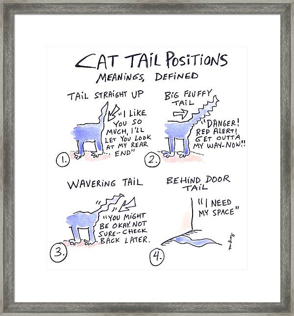 cat position diagram 2000 jeep grand cherokee laredo stereo wiring tail positions framed print by molly brandenburg featuring the drawing