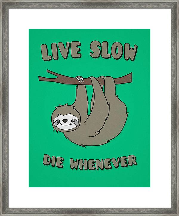 funny and cute sloth