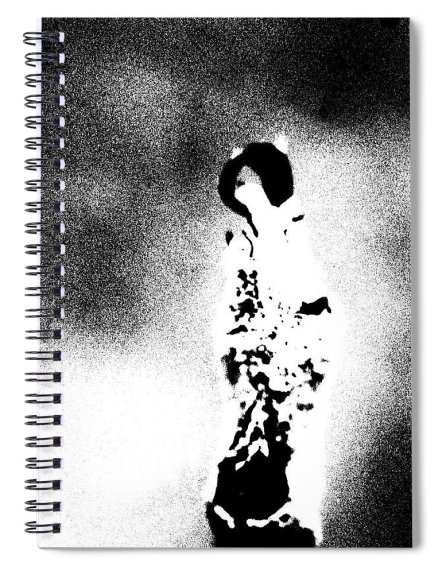 Abstract Spiral Notebook featuring the photograph On A Pedestal by Holly Morris