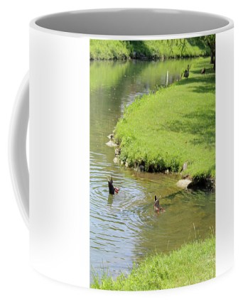 Park Coffee Mug featuring the photograph Bottoms Up by Holly Morris