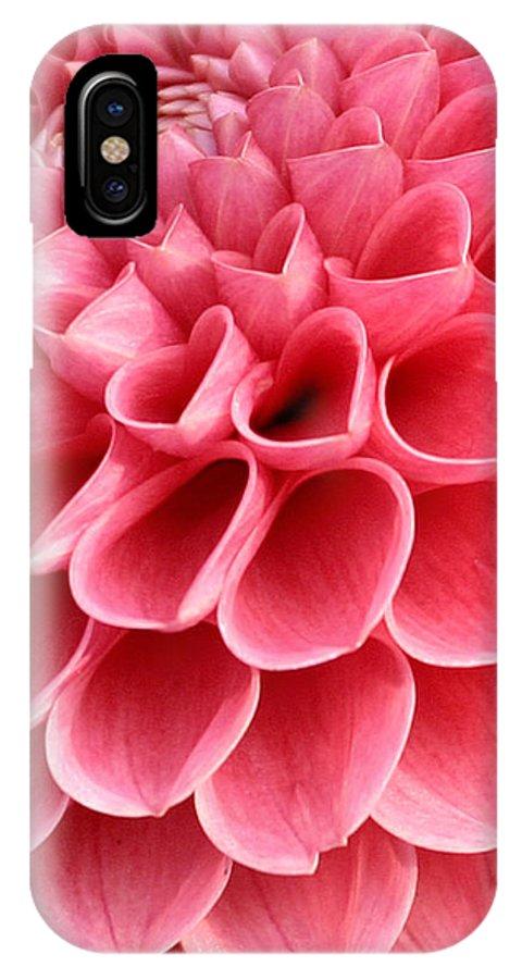 pink heart shaped flower