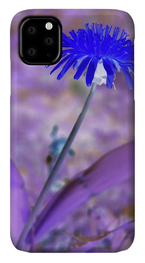 Abstract IPhone Case featuring the photograph Pretty In Blue by Holly Morris