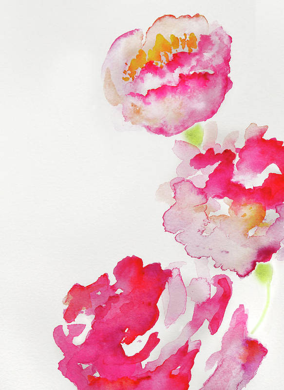 abstract watercolour flowers poster
