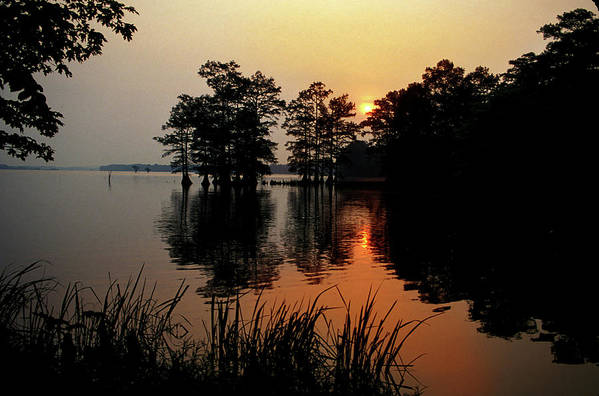 Sunrise Art Print featuring the photograph Sunrise on Reelfoot Lake by James Richardson