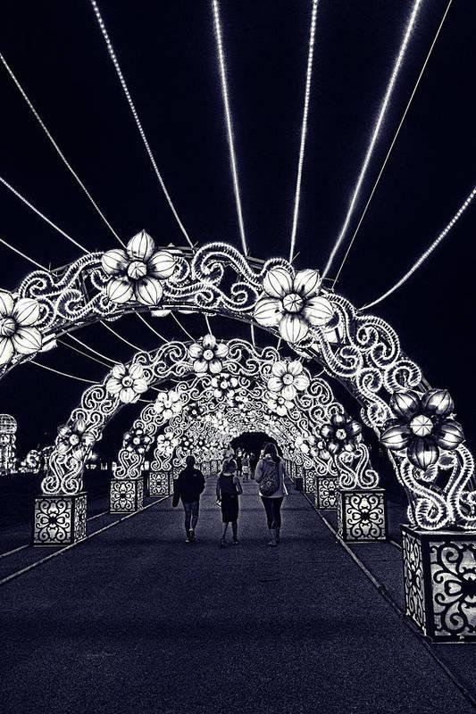 Dragon Lights Festival flower tunnel