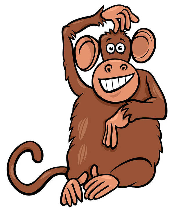 Funny Monkey Drawing : funny, monkey, drawing, Funny, Monkey, Drawing, Pictures, Ideas