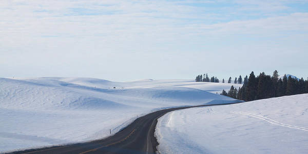 Winter Art Print featuring the photograph Winter Country Road 2 by Tatiana Travelways