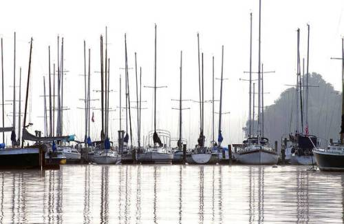 Sailboats reflected by Sharon Popek