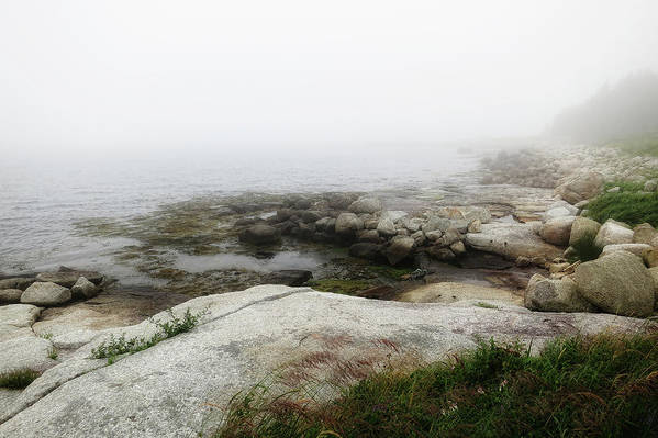 Nova Scotia Art Print featuring the photograph Nova Scotia Fog by Tatiana Travelways