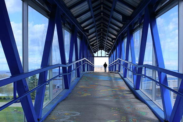 Bridge Art Print featuring the photograph Under The Blue Bridge by Tatiana Travelways
