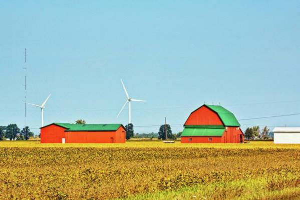 Barns Art Print featuring the photograph Red Barns In Lake Erie Area, Ontario, Canada by Tatiana Travelways