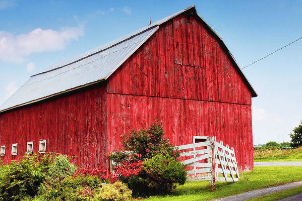 Barn Art Print featuring the photograph The Red Barn by Tatiana Travelways