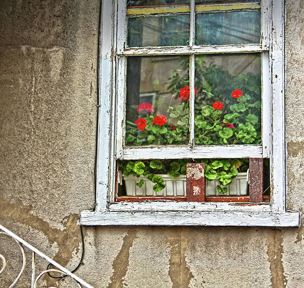 Window Art Print featuring the photograph Open Window by Tatiana Travelways